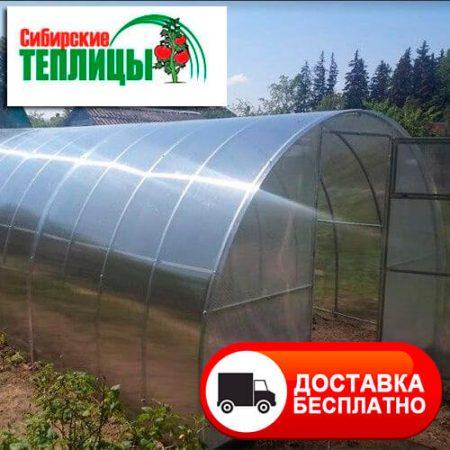 Теплица из поликарбоната Сибирская Люкс фото в собранном виде