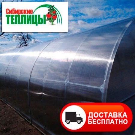 Теплица из поликарбоната Сибирская Стандарт с системой крепления краб